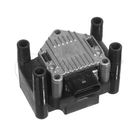 Beru ZSE003 Ignition Coil